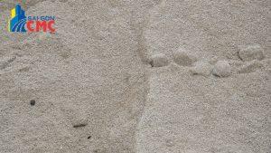 Đơn vị cung cấp bảng giá cát bê tông
